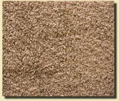 Carpet Cut and Loop